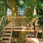 Дом-цилиндр на дереве