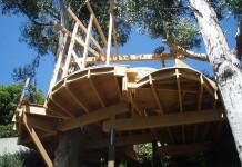 Основание дома на дереве