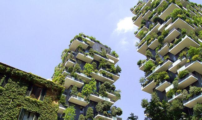 Зеленый офис. Зеленый город